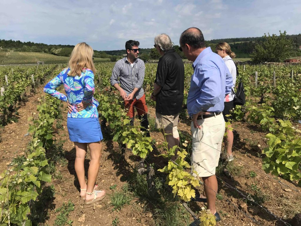 wine tasting tour southern burgundy maconnais private tour wine maker